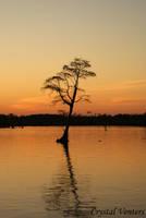 West Landing Marina Sunset 1 by poetcrystaldawn