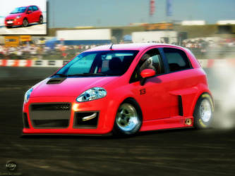 Fiat Punto by Caioul