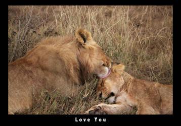 Love You by pinballwitch