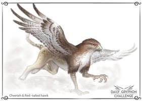 Gryphon Challenge 11 : Cheetah and Red tailed hawk by Pechschwinge