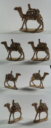 Camels by darazan