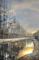 le matin au canal by Mcdbrd