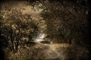 the way by Mcdbrd