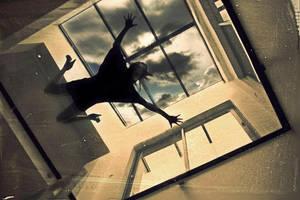 Fly by Mcdbrd