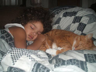 The Dark Princess and The Feline King by XxSmileBrightxX