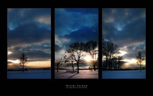 Winter Solace by budmedia