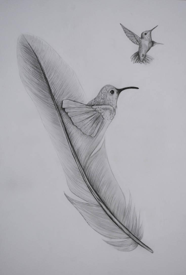 hummingbird feather by darkdeadrose on deviantart
