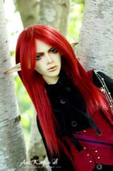 Scarlet Elf by Aoi-kajin