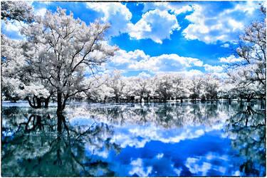 Between Land and Water by helios-spada