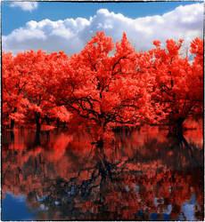 Redleaf Forest by helios-spada
