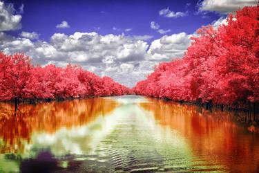Wishing Creek by helios-spada