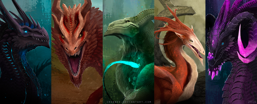 Dragons by IrenBee