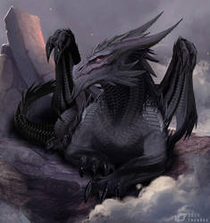 Dragon Vulom by IrenBee
