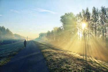 morning walk by NemanjaJ
