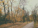 late autumn, in the park by snusmumrikenn