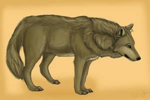 Brown Wolf by Riverwolfen89