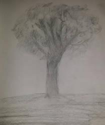 :.My Tree Sketch.: by Princ3ssWolfi3