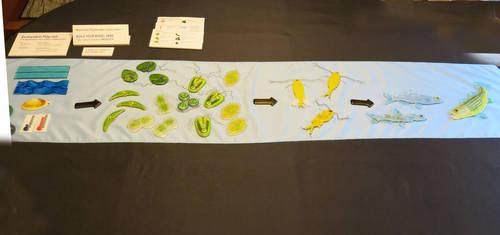Ecosytem Play Set:  The Sacremento Delta Edition by trilobiteglassworks