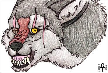 kae growl sketch by 00129