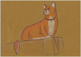 039. - Cat by Larchzie