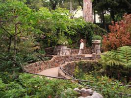 Fairytale-Forest 1 by GaiaShirley