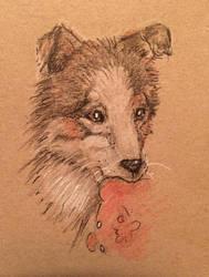 Puppy (Xinix) by Assink-art