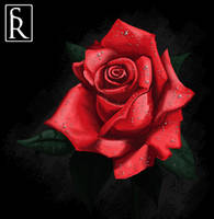 Rose for a Lady by VonStreff