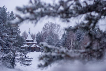 Forest church by erynrandir