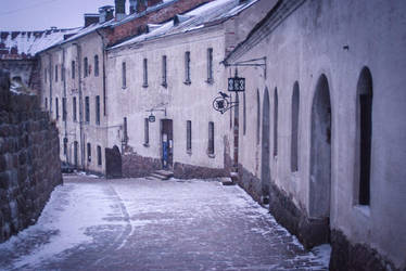 Vyborg Castle by erynrandir