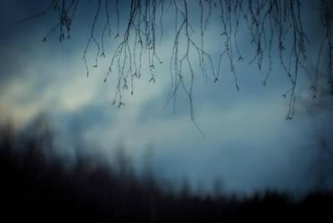 Evening by erynrandir