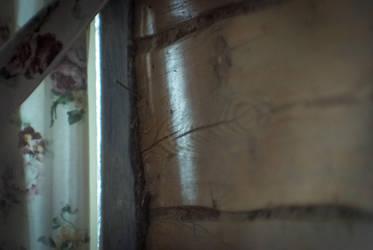 Wooden wall by erynrandir