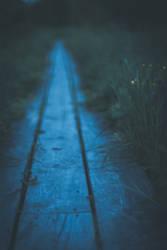 Twilight path by erynrandir