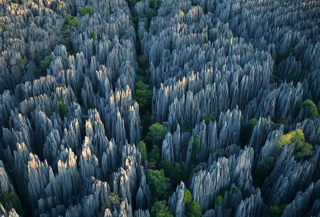 Stone-Forest-1 by Sokolva