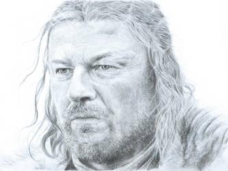 Lord Eddard Stark by Polaris279