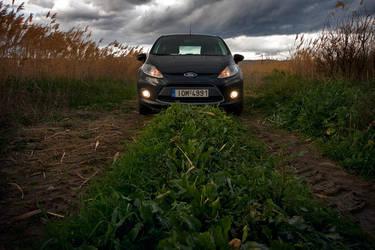 Ford Fiesta by dafni