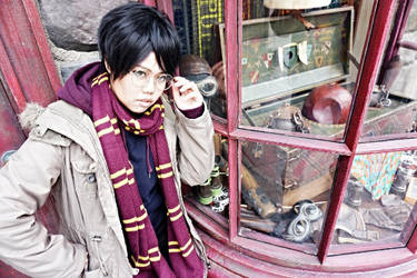 HP-Hey Mr Potter by astachan
