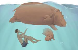 Schwimmen Flusspferd by Kandali