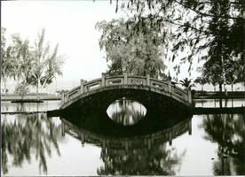 The Bridge by The-Doug-Monkey-boy