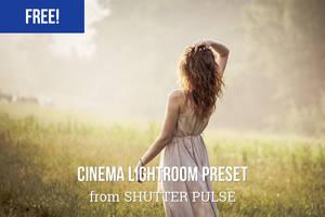 Free Cinema Lightroom Preset by shutterpulse