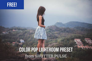 Color Pop Lightroom Preset by shutterpulse