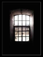 The Window by taifun