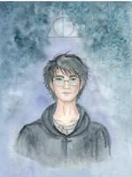 Harry Potter by IrinaSelena