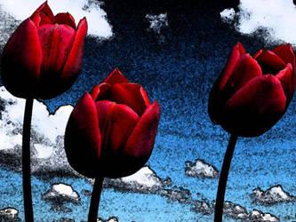 Tulips by cehavard90