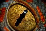 The Eye of the Tokay by ForsakenRaptor