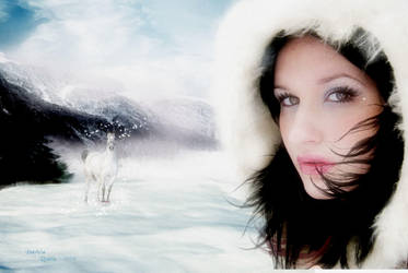 Winter Magic by PatriciaRodelaArtist