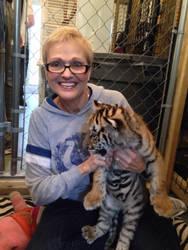 Tiger Cub 2 by PatriciaRodelaArtist