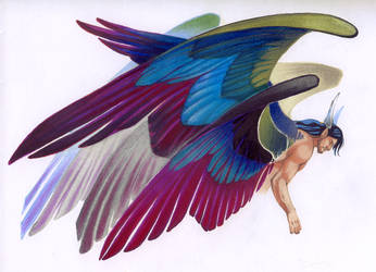 Six wings by Katerinich
