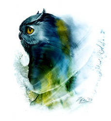 Owl by DappleHack