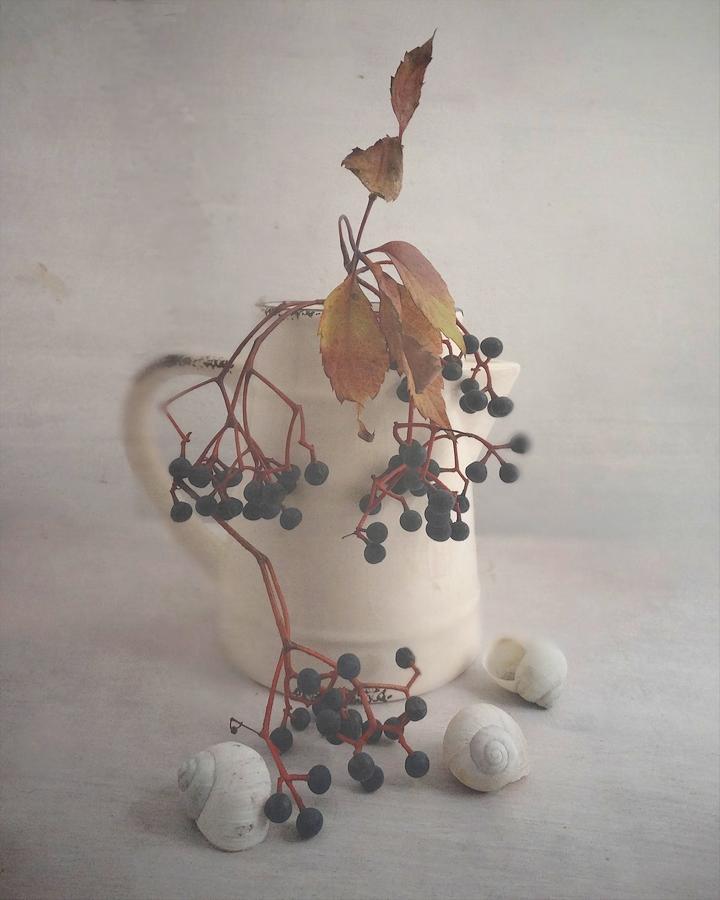 Autumn silence... by Luciuuu