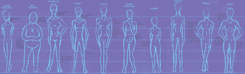 Body type chart - female by princessshiny